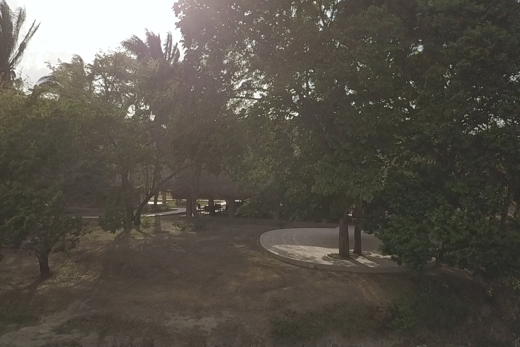 Terraza Amarillo